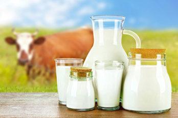 mlieko-2